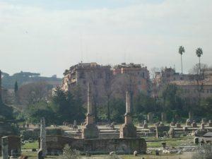 古代ローマの中心部フォルム・ロマヌムの遺跡フォロロマーノ